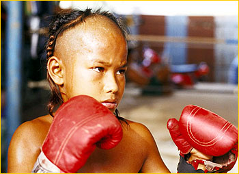 young thai boxer
